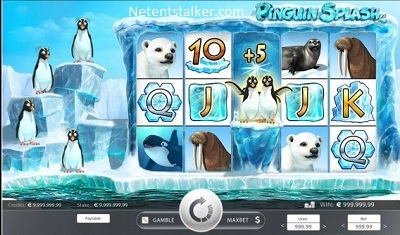 Pinguin Splash Rabcat Slot