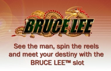 Bruce Lee Slot Game Williams WMS