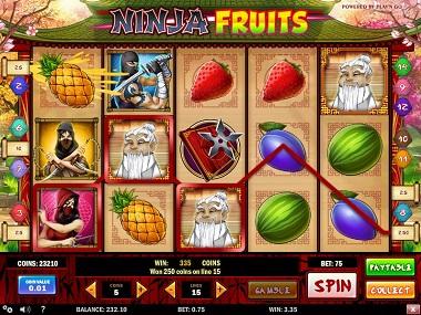 Ninja Fruits Slot Playn GO