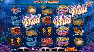 Dolphin Quest Slot Game