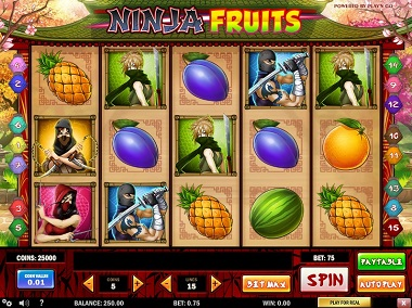 Ninja Fruits Playn GO Slot