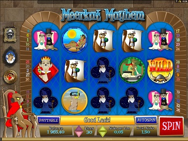 Meerkat Mayhem Slot Screenshot
