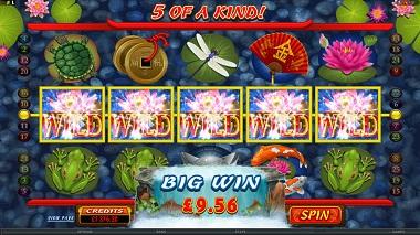 Lucky Koi Microgaming Slot