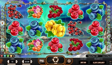 play winterberries video slot