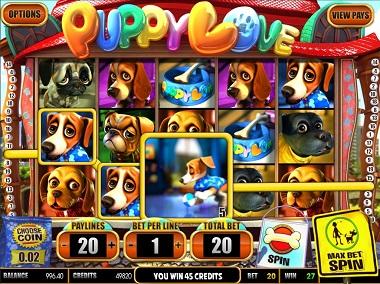 Puppy Love Slot Game