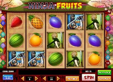 Ninja Fruits Slot Play'n GO