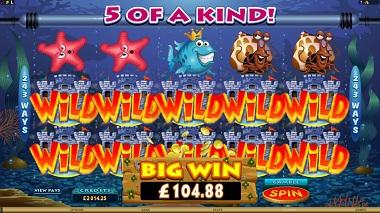 Fish Party Big Win