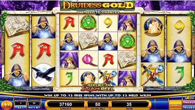 Druidess Gold Video Slot