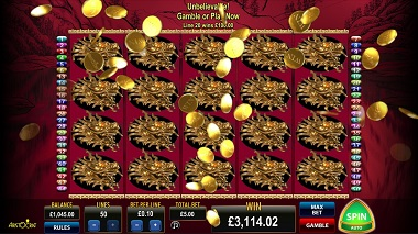 50 Dragons Free Spins