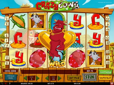 Crazy Cows Slot Playn GO