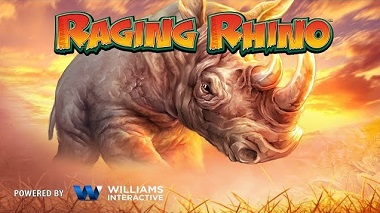 Raging Rhino Williams Interactive