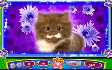 OMG Kittens Online Slot