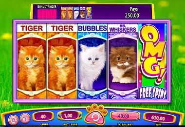 OMG Kittens Slot Williams