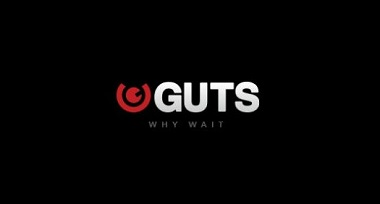 Guts Why Wait