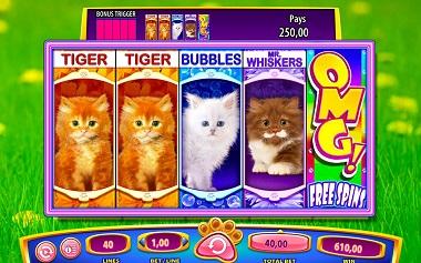OMG Kittens Williams Interactive
