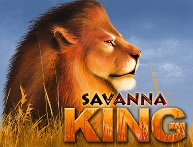 Savanna King Lion