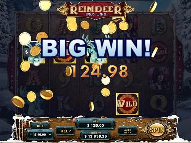 Reindeer Wild Wins Big Win