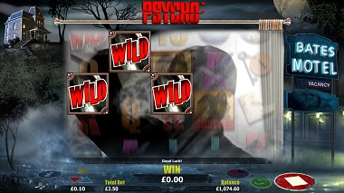 Psycho Slot Wilds