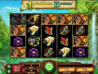 Rainforest Dream Base Game