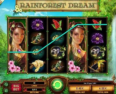 Rainforest Dream Williams Interactive