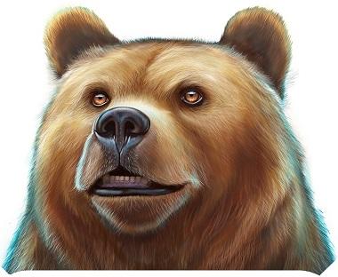 Wild North Play'n GO Bear
