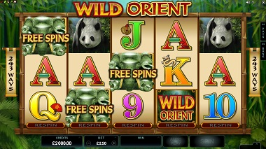 Wild Orient Microgaming Slot 2
