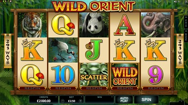 Wild Orient Microgaming Slot