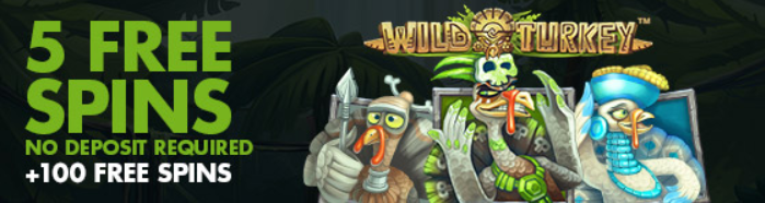 stanjames-5fs-promo-wild-turkey