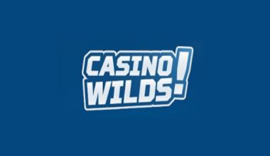 CasinoWilds Casino Logo