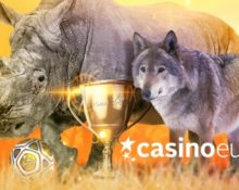 Casino Euro – Become a Cash Champion!