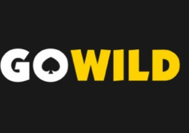 GoWild Casino – New Year Casino Deals!