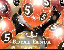 Royal Panda – 5th Birthday Party!